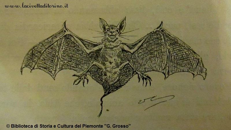 Illustrazione di Edoardo Calandra, 1884.