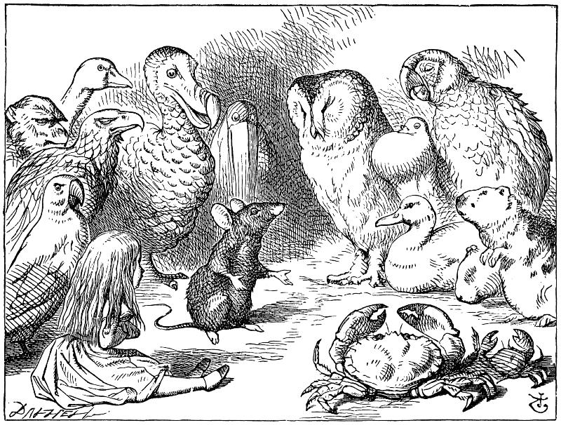 """Illustrazione di John Tenniel per le """"Avventure di Alice nel paese delle meraviglie"""", 1872"""