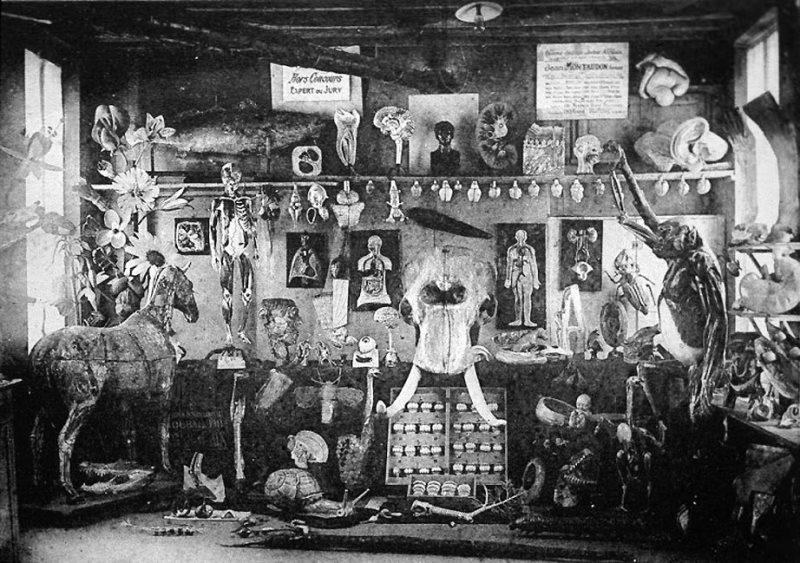 Il laboratorio di Auzoux nel suo paese natale: Saint-Aubin-d'Écrosville, in Normadia