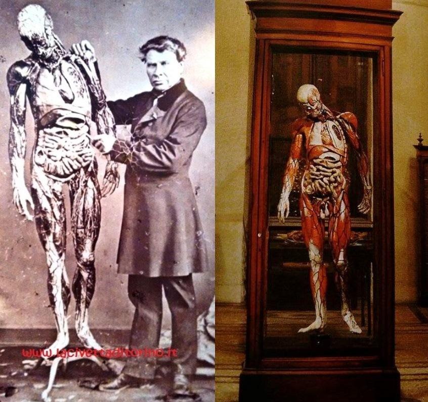 """A sinistra: Auzoux, con un'espressione piuttosto arcigna, accompagnato da uno dei suoi """"uomini"""", molto simile a quello di Torino (a destra, in un'immagine tratta dalla guida del Museo di Anatomia)."""