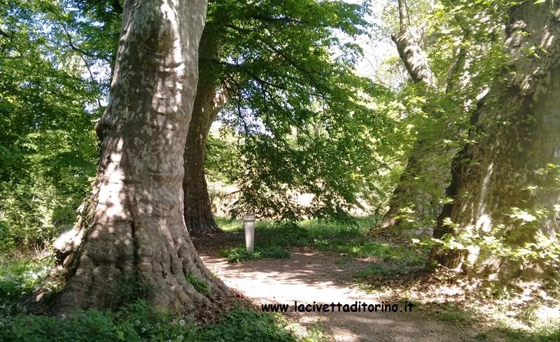 monumento-cane-werter-parco-castello-racconigi-2
